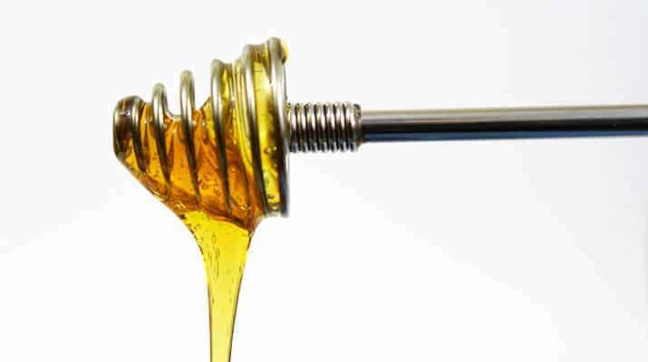 Cuisinox stainles steel honey dipper