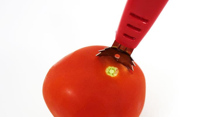 piercing the skin of the tomato with sharp blades on tomato scoop