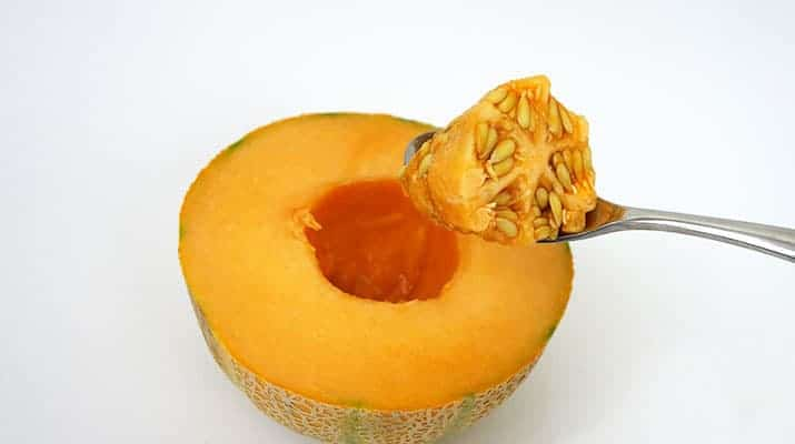 Scooping the seeds out of the center of cantaloupe melon