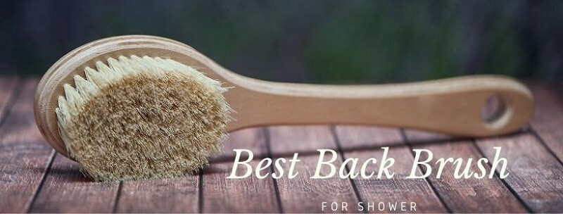 best back brush for shower