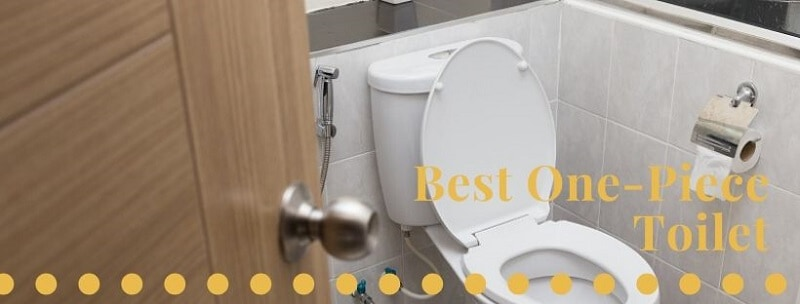 best one piece toilet